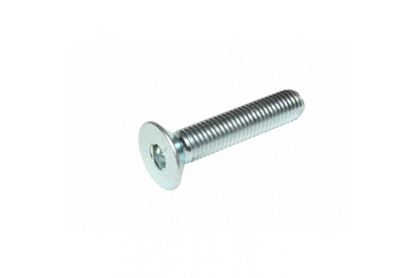 Socket screws